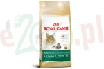 ROYAL CANIN CAT MAINE COON 0,4 KG