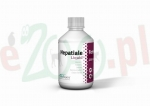 HEPATIALE FORTE LIQUID 250 ML ( wątroba hepatic )