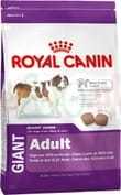 ROYAL CANIN ADULT GIANT DOG 15 KG ( olbrzymie i duże rasy )