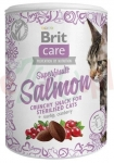 BRIT CARE CAT SNACK SUPERFRUITS SALMON 100 G ( przekąska )
