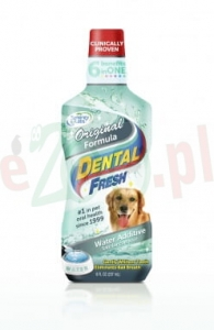 DENTAL FRESH STANDARD PREPARAT DO HIGIENY JAMY USTNEJ 237 ML